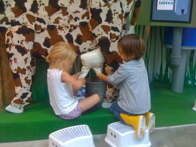 Mucca - Learning about the Cow and Milk